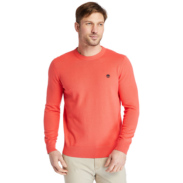 Pull en coton bio Williams River pour homme en rose-