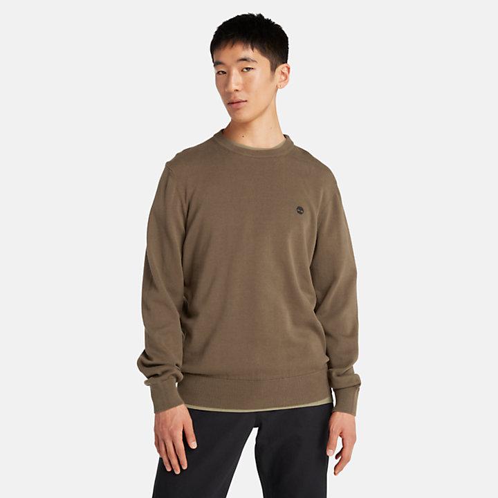 Jersey de Algodón Orgánico Williams River para Hombre en verde oscuro-