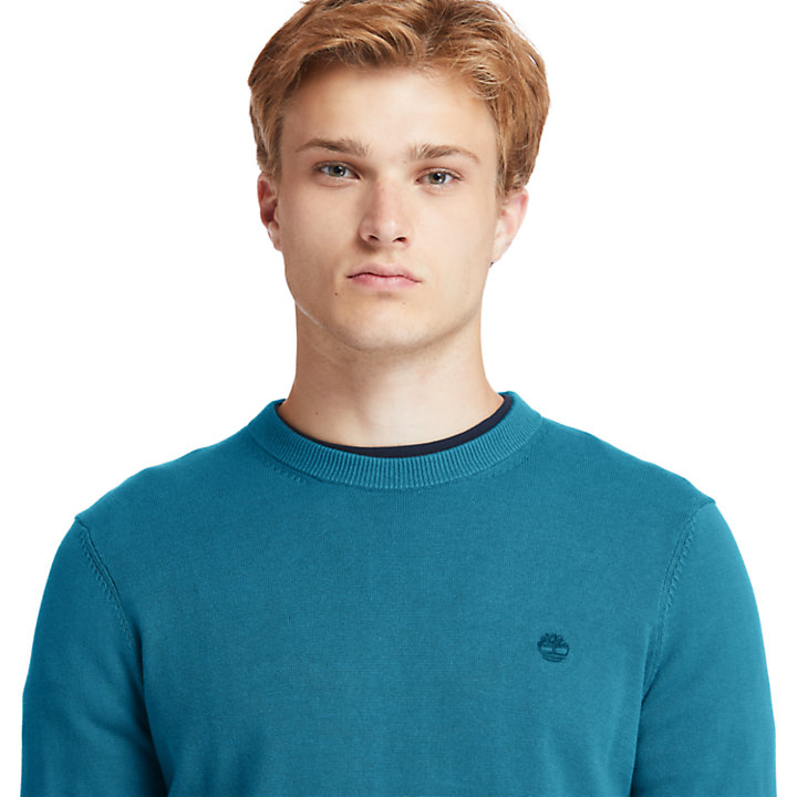 Williams River Sweater for Men in Teal-