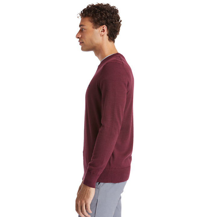 Pull Williams River pour homme en bordeaux-