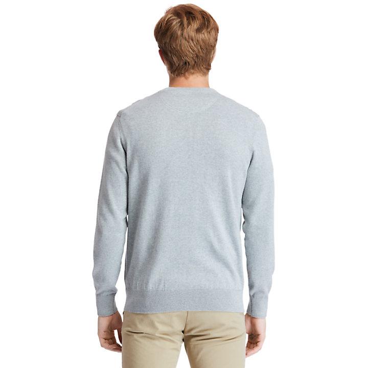 Williams River V-neck Sweater for Men in Grey-