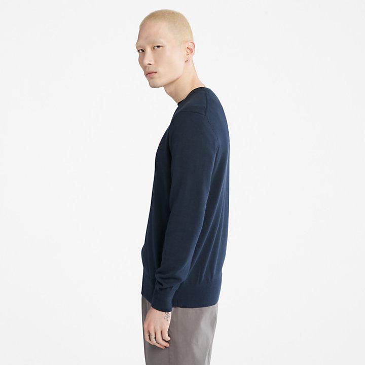 Williams River V-neck Sweater for Men in Navy-