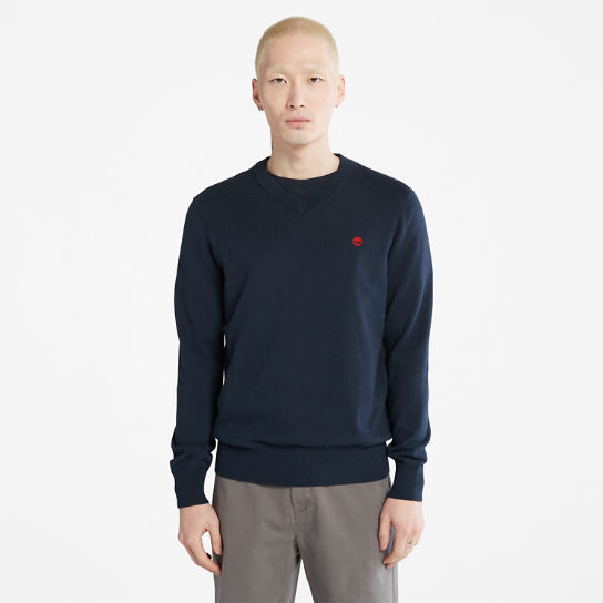 Williams River V-neck Sweater for Men in Navy | Timberland