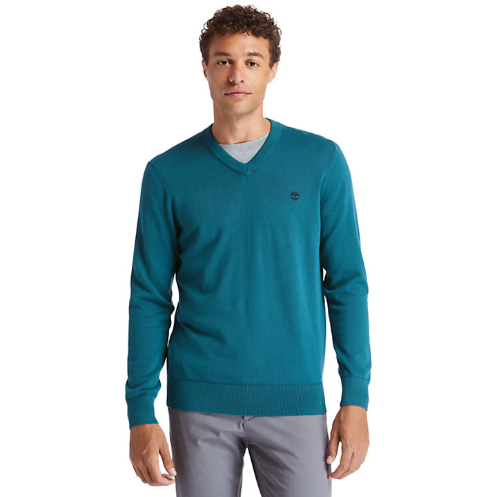 Williams River V-neck Sweater for Men in Green-