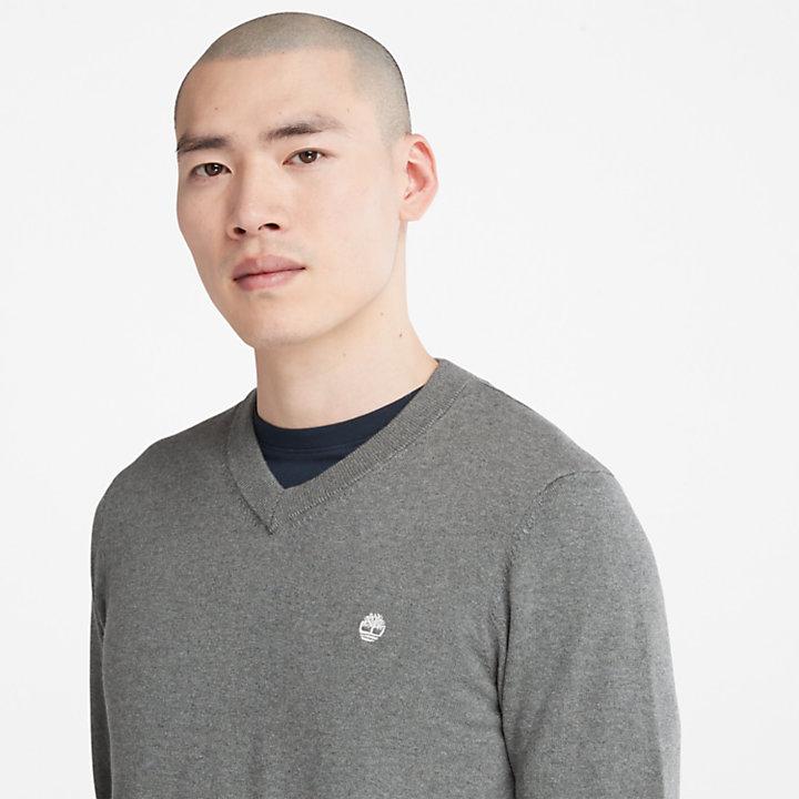 Williams River V-neck Sweater for Men in Dark Grey-