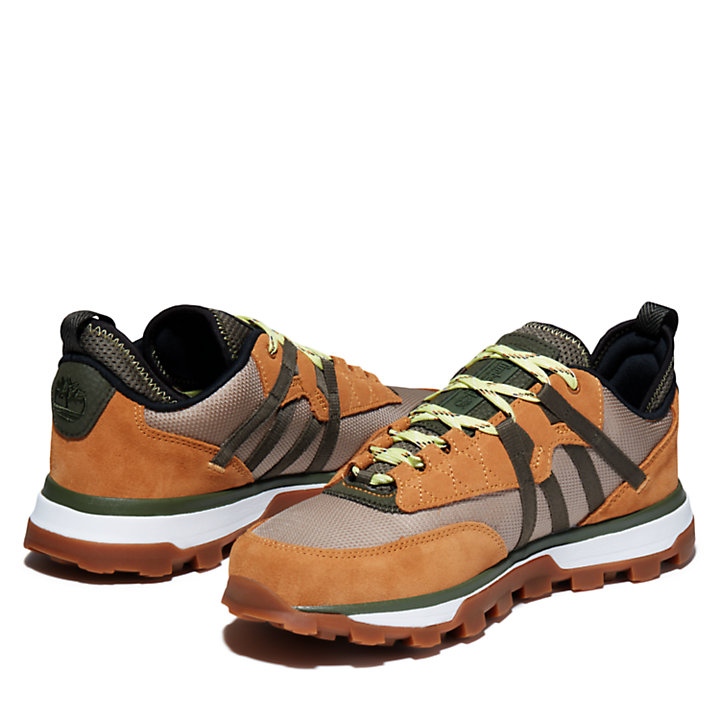 Treeline Low Sneaker for Men in Yellow-