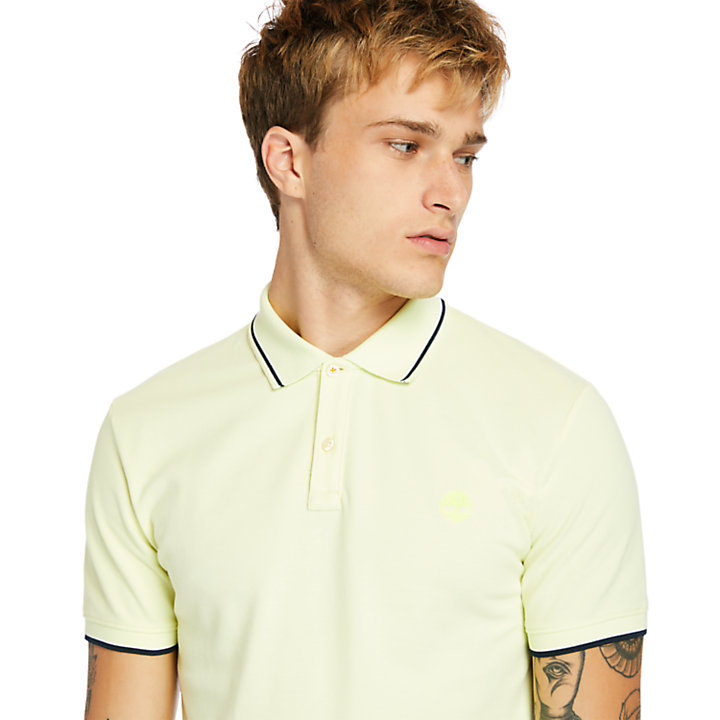 Millers River Tipped-collar Polo Shirt for Men in Light Green-
