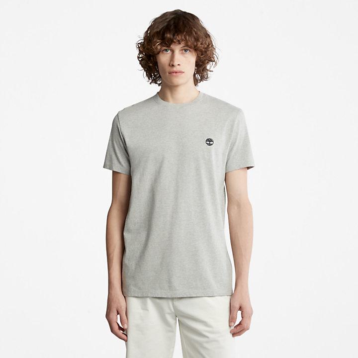 T-shirt à col rond Dunstan River pour homme en gris-