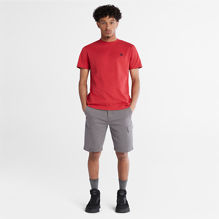 Dunstan River Crew T-Shirt for Men in Red-