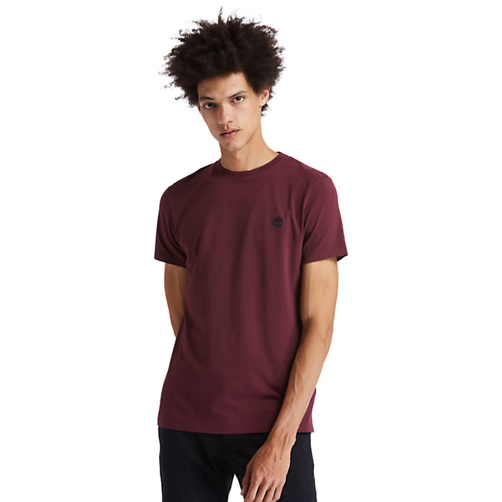 Dunstan River Crew Tee for Men in Burgundy-