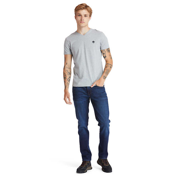 Dunstan River V-Neck T-Shirt for Men in Grey-