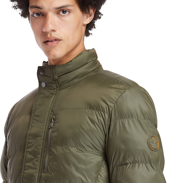Mt. Weeks Thermore® Ecodown® Jacket for Men in Green-