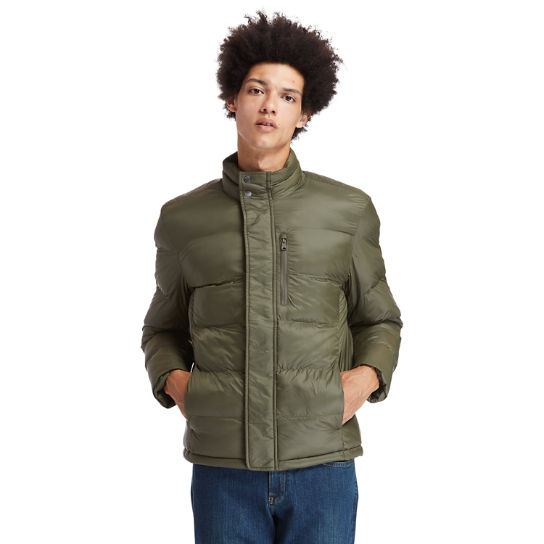 Mt. Weeks Thermore® Ecodown® Jacket for Men in Green | Timberland