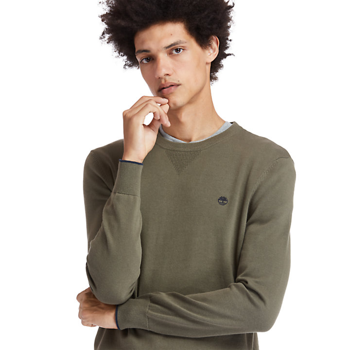 Williams River Organic Cotton Sweater for Men in Green-