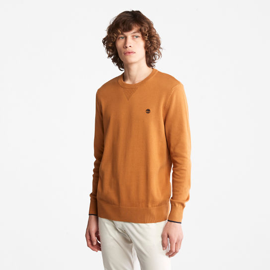 Williams River Organic Cotton Sweater for Men in Yellow | Timberland
