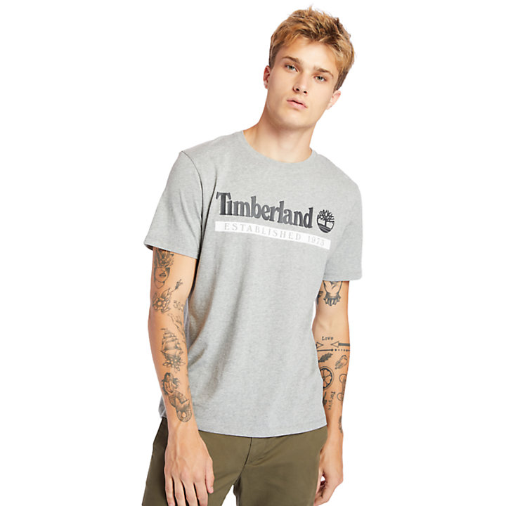T-shirt da Uomo Established 1973 in grigio-