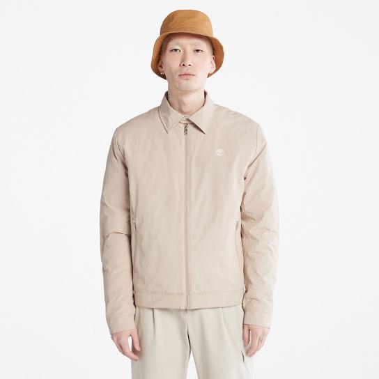 Hacer bien Malversar diario  Stratham Bomber Jacket for Men in Beige | Timberland