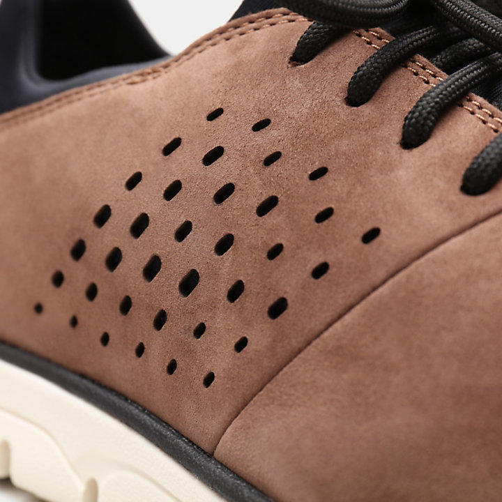 Bradstreet Perforated Oxford voor Heren in bruin-