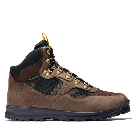 Trumbull Mid Hiker for Men in Brown | Timberland