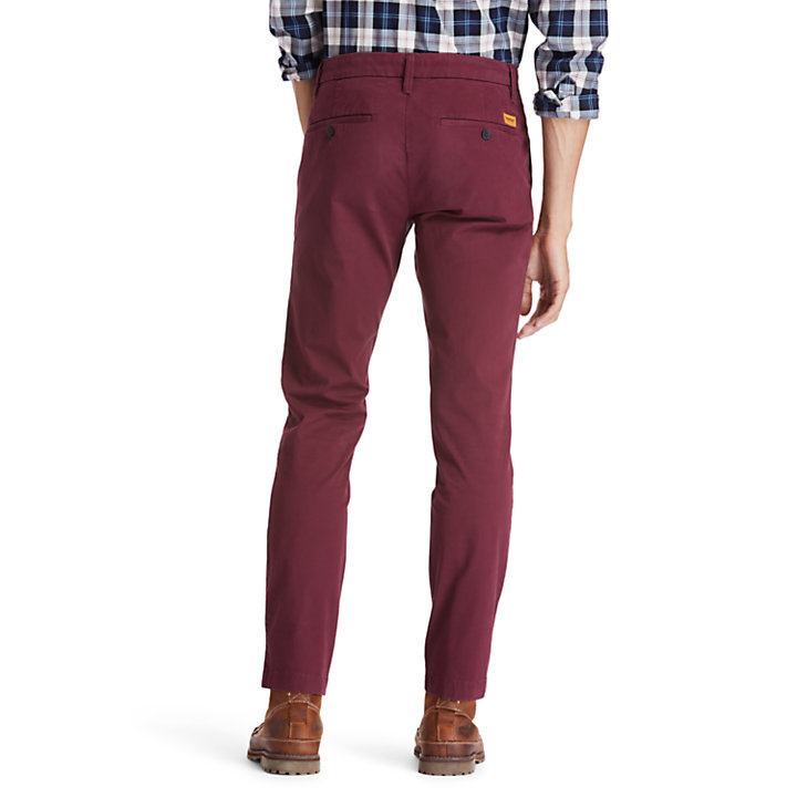 Sargent Lake Chinos for Men in Burgundy-