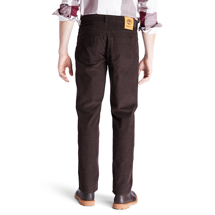 Squam Lake Corduroy Trousers for Men in Dark Brown-