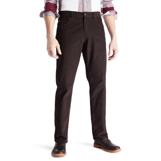 Squam Lake Corduroy Trousers for Men in Dark Brown | Timberland