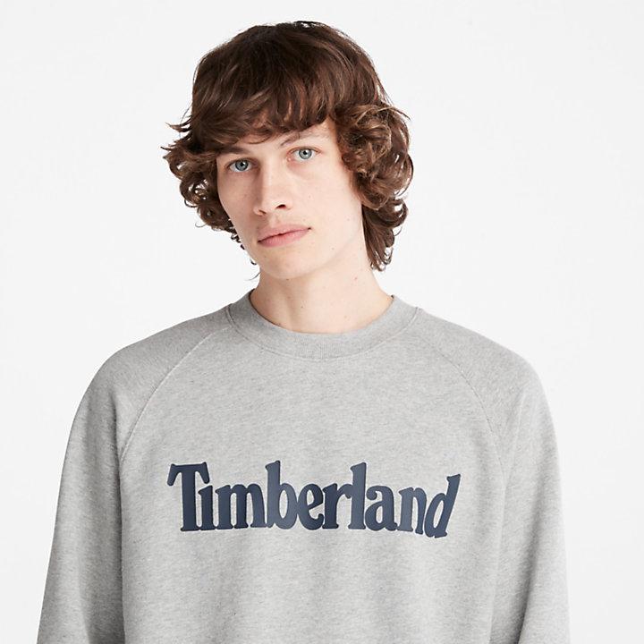 Linear Logo Crew Sweatshirt for Men in Grey-