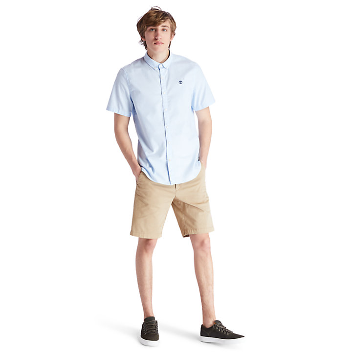 Short chino Squam Lake pour homme en kaki-
