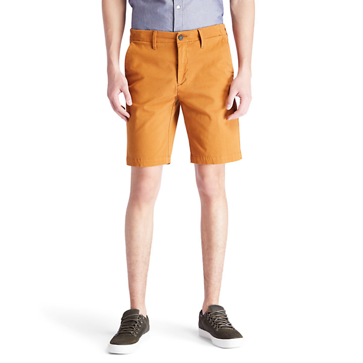 Squam Lake Chino Shorts for Men in Yellow-