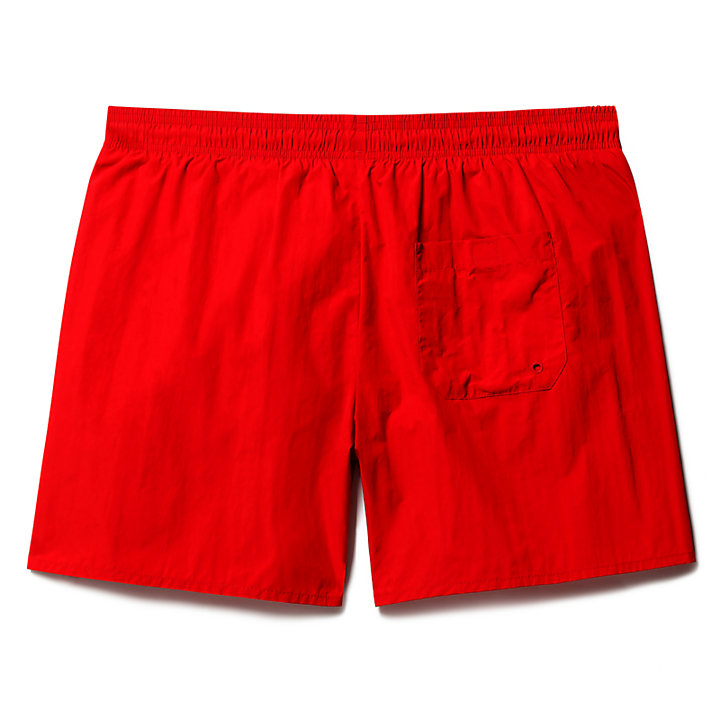 Sunapee Lake Solid Swim Shorts for Men in Red-
