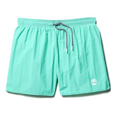 Sunapee+Lake+Solid+Swim+Shorts+for+Men+in+Green