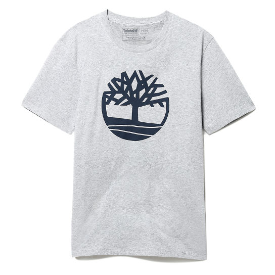 T-shirt Kennebec River Tree pour homme en gris | Timberland