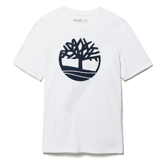 Kennebec River Tree T-Shirt für Herren in Weiß | Timberland