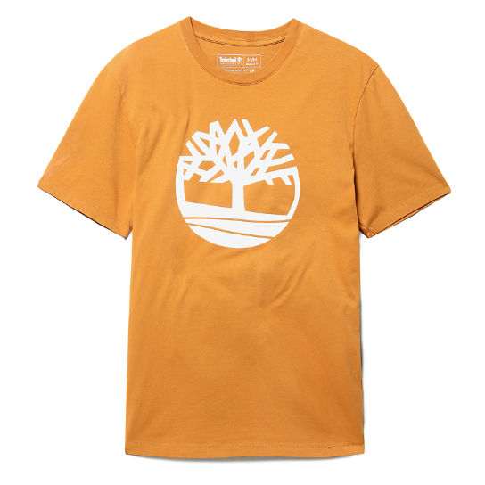T-shirt da Uomo Kennebec River Tree in giallo | Timberland