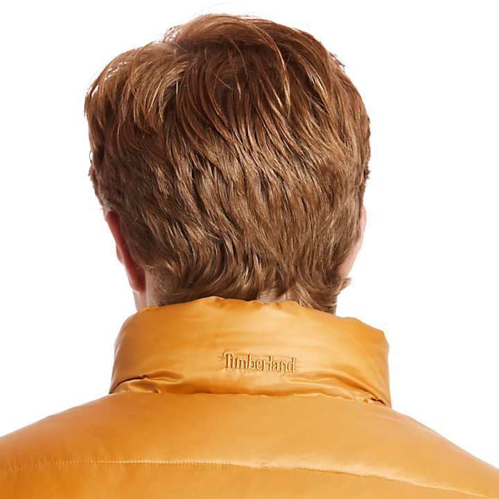 Chaqueta Reversible de Borreguillo Sintético Mount Whiteface para Hombre en amarillo-