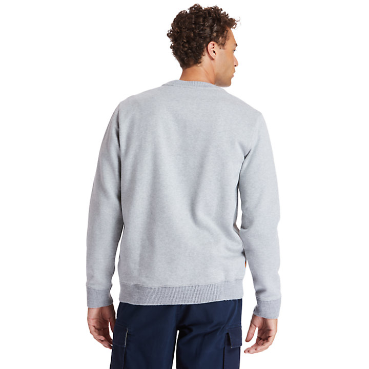 Little Cold River Sweatshirt for Men in Grey-
