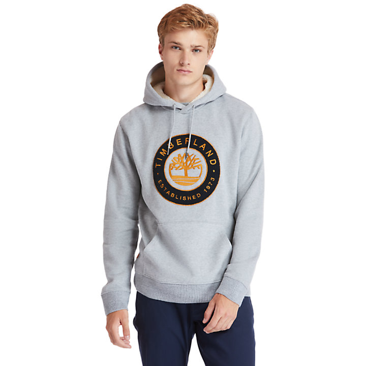 Little Cold River Hoodie for Men in Grey-