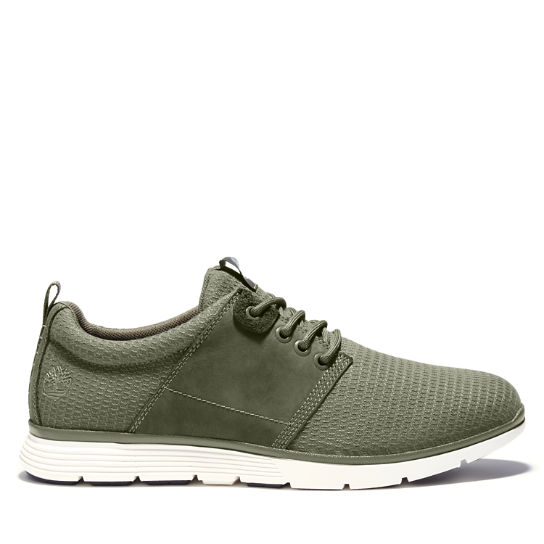 Killington Oxford for Men in Green | Timberland