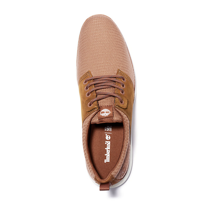Killington Oxford for Men in Brown-