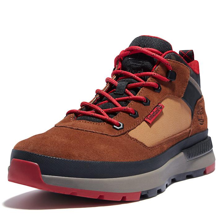 Field Trekker Trainer for Men in Brown-