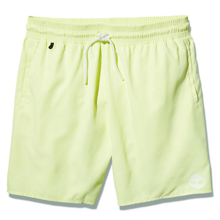 Bañador de Color Liso Sunapee Lake para Hombre en verde claro-