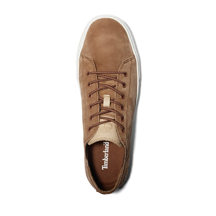 Oxford Adventure 2.0 Cupsole pour homme en marron-