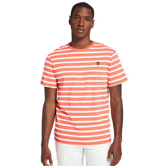 Zealand River Striped T-Shirt for Men in Red | Timberland