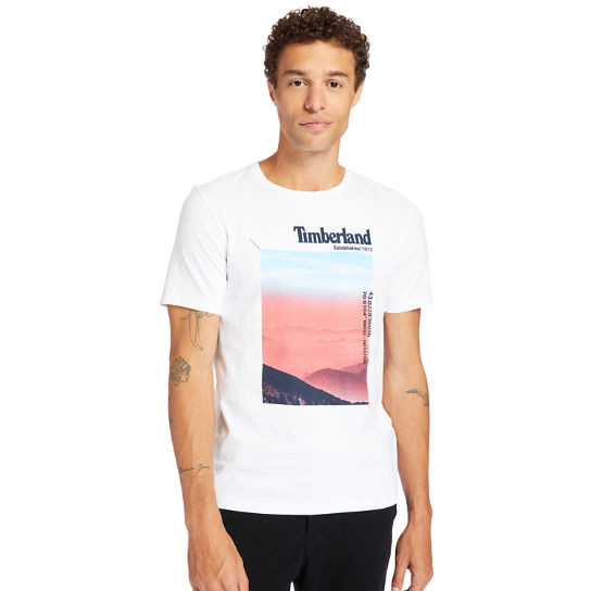Photographic T-shirt voor heren in wit | Timberland