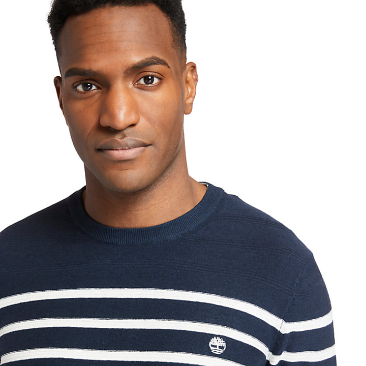 Striped Crewneck Sweater for Men in Navy-