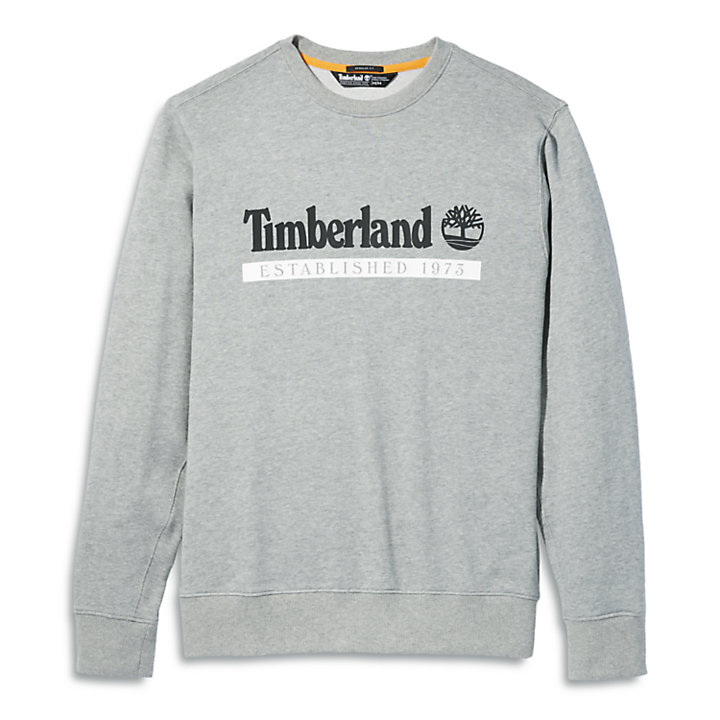 Established 1973 Sweatshirt voor heren grijs-