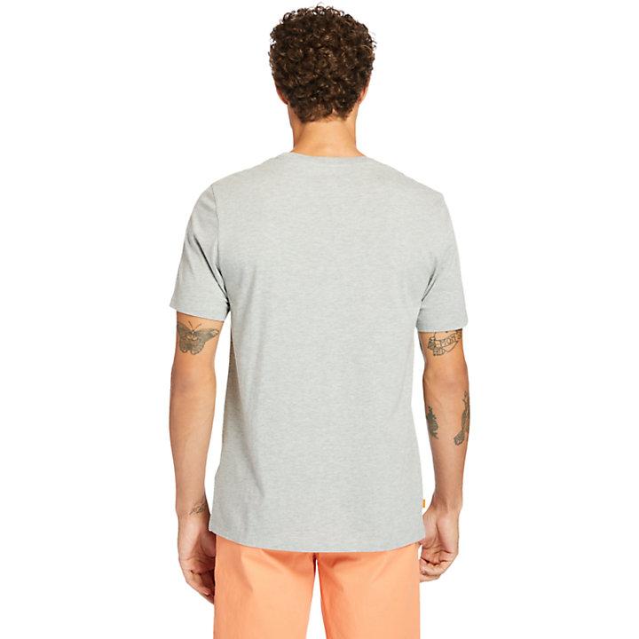Cocheco River Supima® Cotton T-shirt for Men in Grey-
