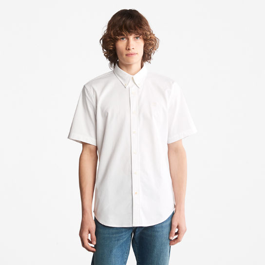 Pleasant River Oxford Shirt for Men in White | Timberland