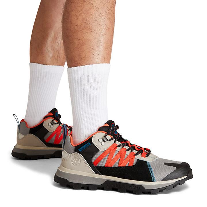 Sneaker da Uomo Treeline STR in grigio/colore nero-