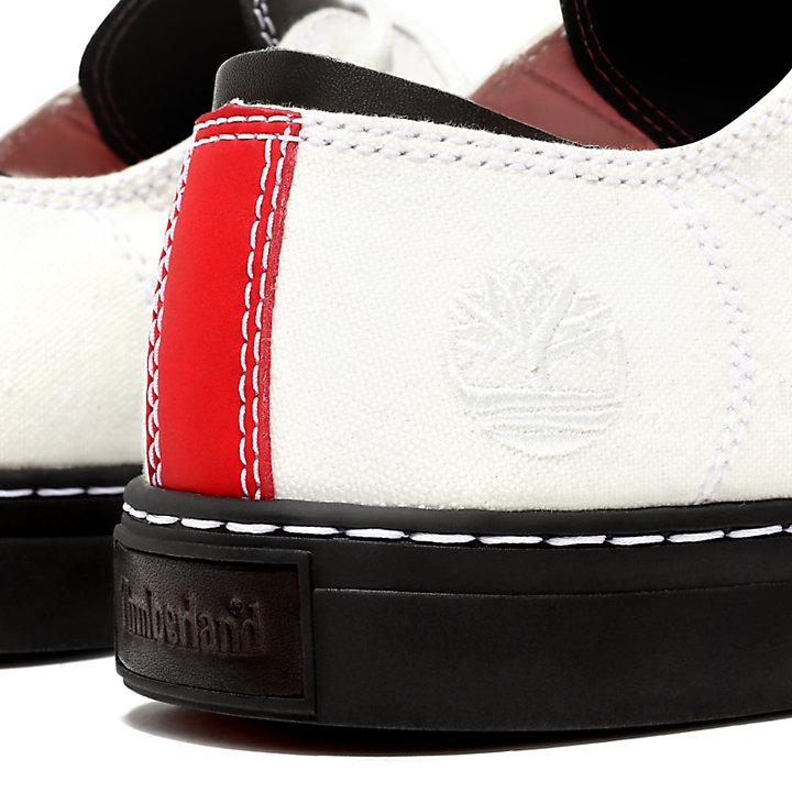Adventure 2.0 Cupsole Sneaker for Men in White-